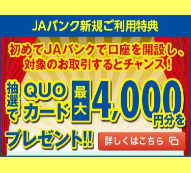QUOカードプレゼントキャンペーンのイメージ